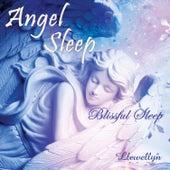 Angel Sleep - Blissful Sleep by Llewellyn