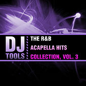 The R&B Acapella Hits Collection, Vol. 3 von Dj Tools