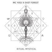Ritual Mystical (feat. East Forest) by MC Yogi