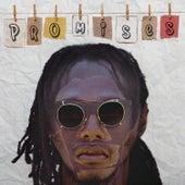 Promises de No-Maddz