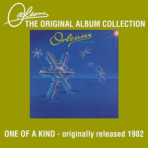 One Of A Kind by Orleans