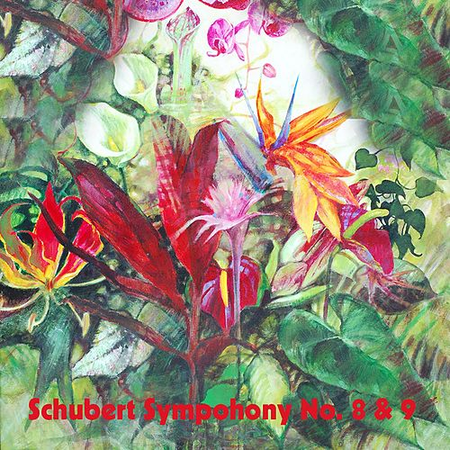 Schubert Sympohony No. 8 & 9 by Boston Symphony Orchestra