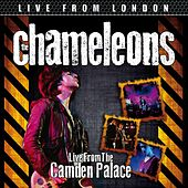 Live From London by The Chameleons