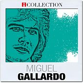 iCollection by Miguel Gallardo