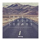 True School Sounds, Vol. 1 by Various Artists