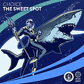 The Sweet Spot - Single de Choice