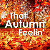 That Autumn Feelin' by Various Artists