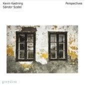 Perspectives by Kevin Kastning