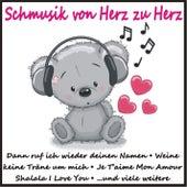 Schmusik von Herz zu Herz de Various Artists