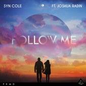 Follow Me (feat. Joshua Radin) di Syn Cole