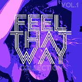 Feel That Way Collection, Vol. 1 - Selection of Deep House by Various Artists