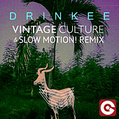 Drinkee (Vintage Culture & Slow Motion! Remix) di Sofi Tukker
