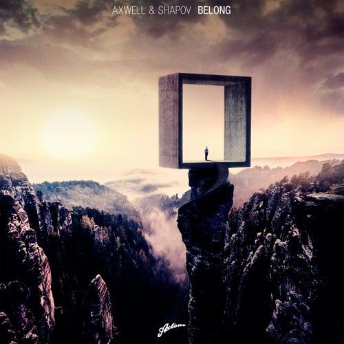 Belong by Shapov