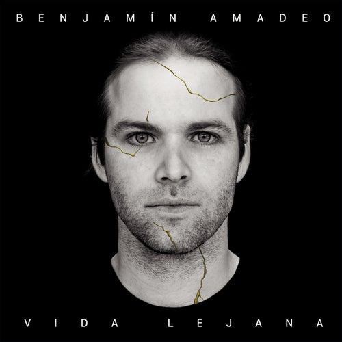 Vida Lejana by Benjamín Amadeo