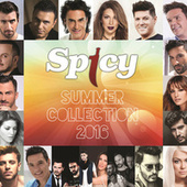 Spicy Summer Collection 2016 by Various Artists