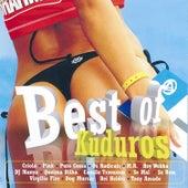 Best Of Kuduros von Various Artists