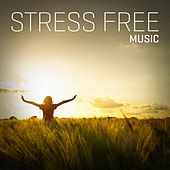 Stress Free Music de Various Artists