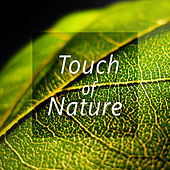 Touch of Nature – Peaceful Music for Total Relaxation, Easy Sleep, Pure Meditation, Spa, Pure Massage von Soothing Sounds