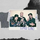 Supra-Sumo, Pt. 1 by Pollo
