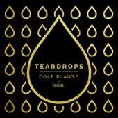 Teardrops by Cole Plante