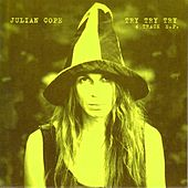 Try Try Try de Julian Cope
