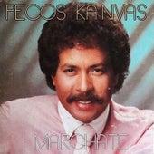 Márchate by Pecos Kanvas