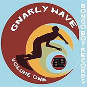 Bongo Boy Records: Gnarly Wave, Vol. 1 by Various Artists