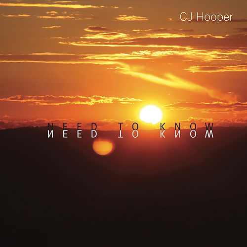 Need to Know by CJ Hooper