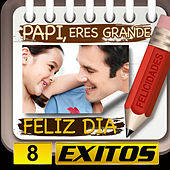 Papi Feliz Dia 8 Exitos by Various Artists