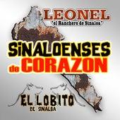 Sinaloenses De Corazon by Various Artists