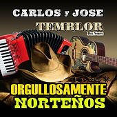 Orgullosamente Nortenos by Various Artists