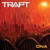 DNA de Trapt