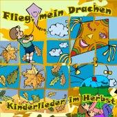 Flieg, mein Drachen: Kinderlieder im Herbst by Various Artists