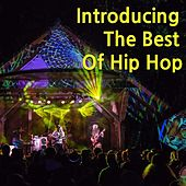 Introducing The Best Of Hip Hop von Various Artists