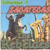 Homenaje A Zacatecas di Los Rebeldes