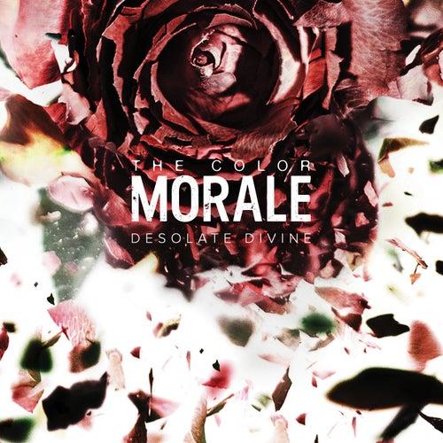 Desolate Divine by The Color Morale