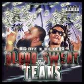 Blood, Sweat and Tears (feat. Ice Billion Berg) by Big M'z (Prod. Sergio Blaze)