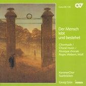 WOLF, H.: 6 Geistliche Lieder / REGER, M.: 8 Geistliche Gesange / WEBERN, A.: Entflieht auf leichten Kahnen (Saarbrucken Chamber Choir, Grun) by Georg Grun
