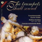 Trumpet Music - HANDEL, G.F. / BACH, J.S. / PURCELL, H. / STRADELLA, A. / VIVALDI, A. / BIBER, H.I.F. / TORELLI, G. / SCHMELZER, J.H.  (Popovic) by Various Artists