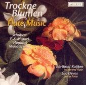 Flute Music - SCHUBERT, F. / MOZART, F. / HUMMEL, J. / MENDELSSOHN, Felix by Barthold Kuijken