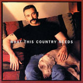 What This Country Needs by Aaron Tippin