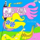 Time Wrinkle Ej-Lp (Vinyl Version) von Still Flyin'