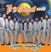 Zorros Amantes de Grupo Trinidad