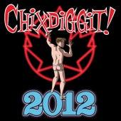 2012 by Chixdiggit