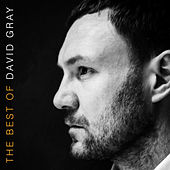 The Best of David Gray de David Gray