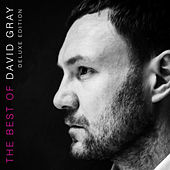The Best of David Gray (Deluxe Edition) von David Gray