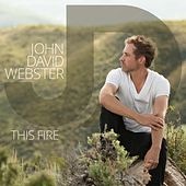 This Fire by John David Webster