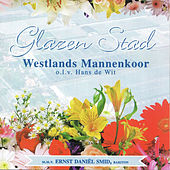 Glazen Stad de Various Artists