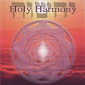 Holy Harmony de Jonathan Goldman