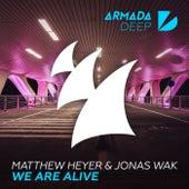 We Are Alive by Matthew Heyer